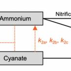 Cyanate soil